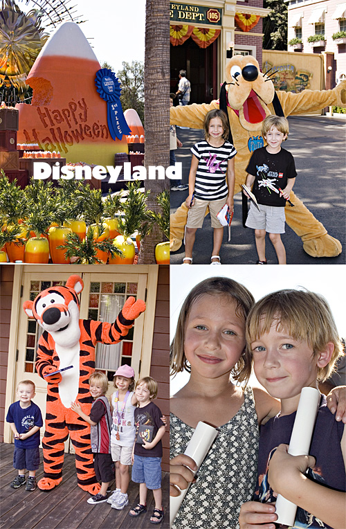 Disneyland_web